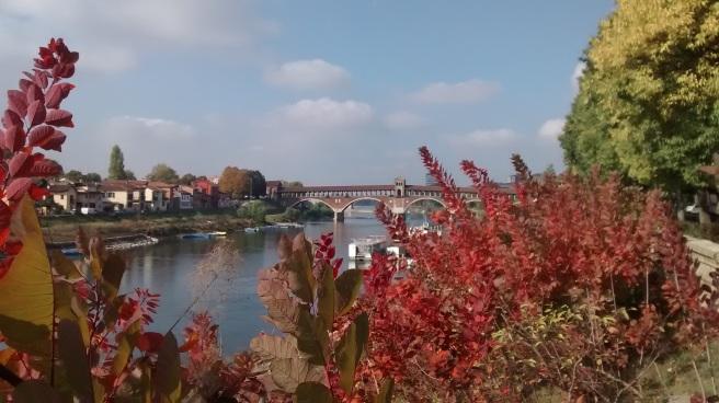 Pavia_PonteCoperto